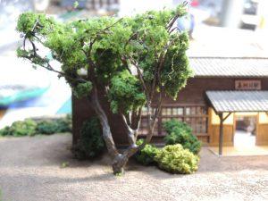嘉例川駅モジの木、フォーリッジ接着